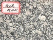 优质芝麻白海会花 矿山直销 精准红外线加工 星子义门石材供应